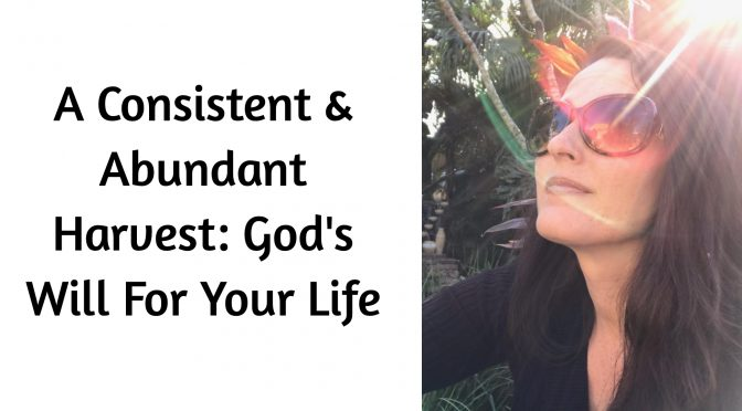 A Consistent & Abundant Harvest: God's Will For Your Life